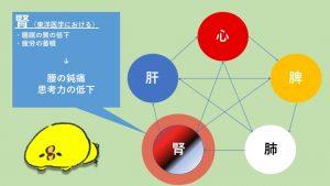 five element kidney disfunction